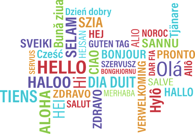 TEFL FAQ: Do I Need to Speak a Foreign Language?