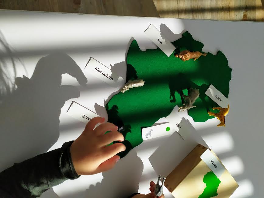 Montessori Pre School
